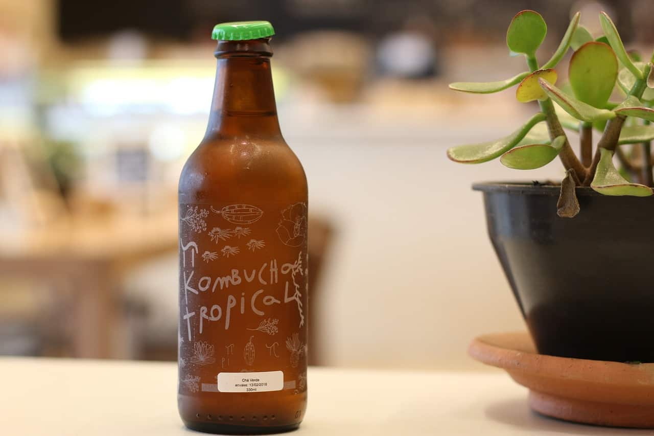 kombucha fermented green tea