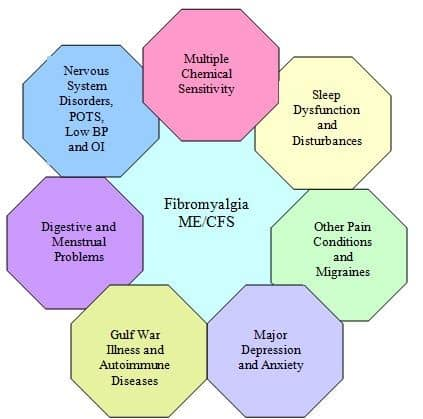 Other conditions in fibro